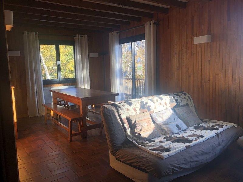 Spacieux appartement dans chalet, location de vacances à Orcières