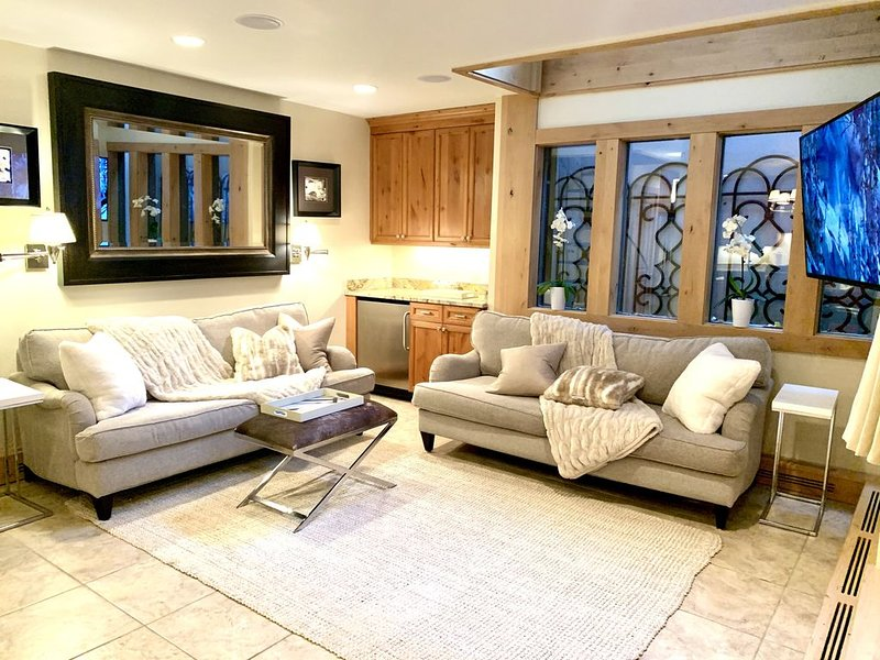 Aspen Mountain Condominium - Fifth Avenue 2 Bd/ 2Ba 1.5 blocks from town, holiday rental in Aspen