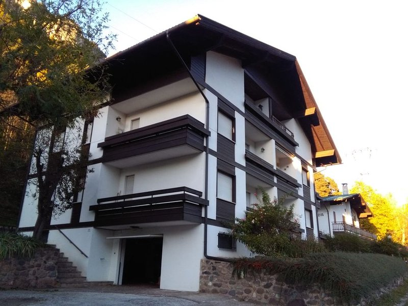 Appartamento Dolomiti  vicino a stazioni sciistiche (Latemar e Pampeago)Dolomiti, vakantiewoning in Tesero