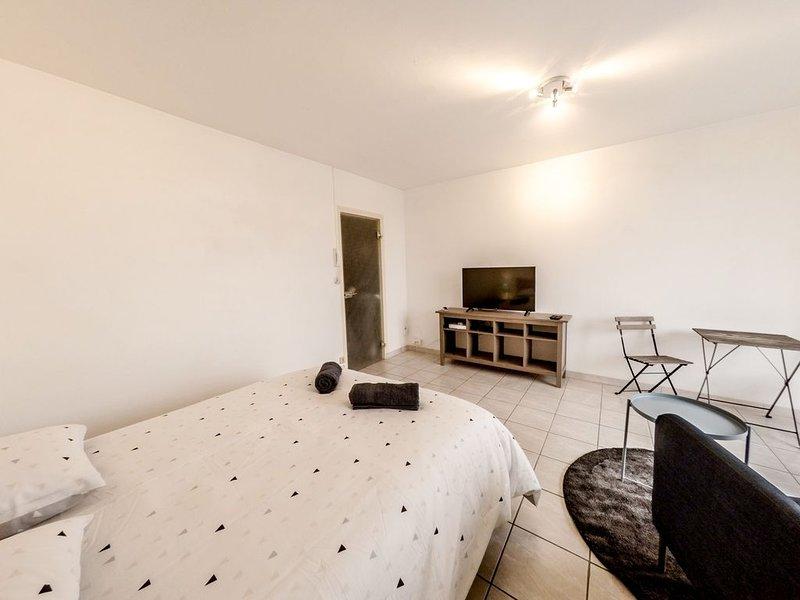 Très bel appartement moderne avec tout le confort, location de vacances à Joué lès Tours
