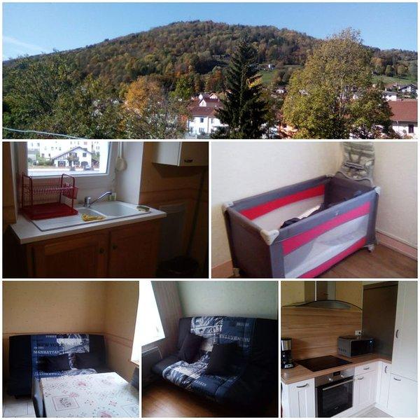 Face à la montagne des Vosges, holiday rental in Cornimont