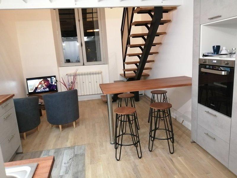 appartement duplex neuf, location de vacances à La Bourboule