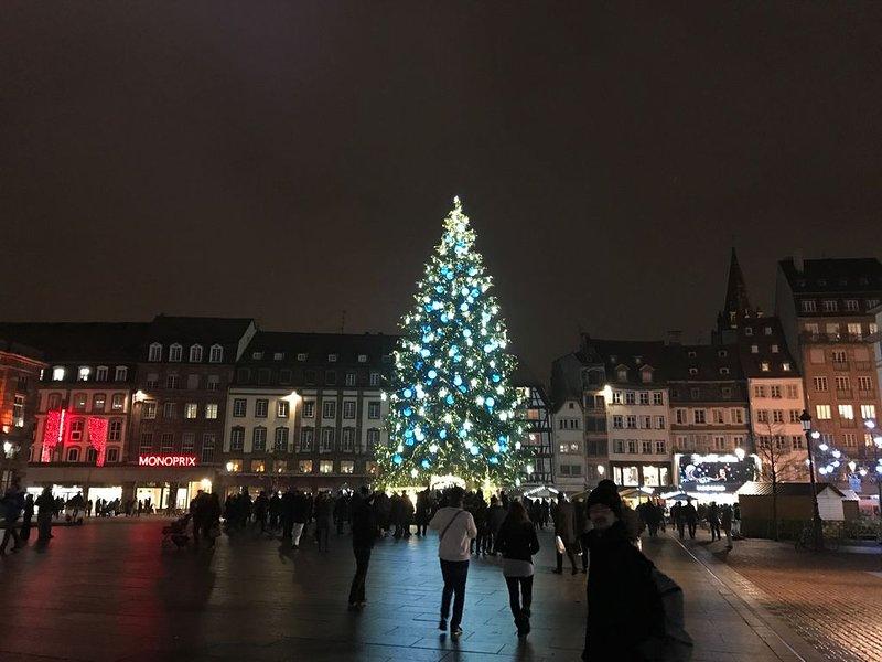 Petit nid douillet en plein coeur de Strasbourg !, location de vacances à Hoenheim