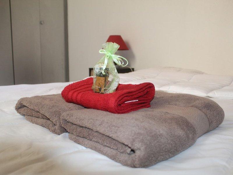 Appartement El Duc au coeur de carcassonne, holiday rental in Cavanac