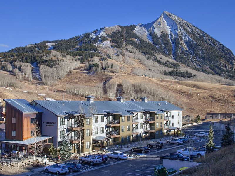 Best view of the mountain - Top Floor Mt. CB Condo - 2B/1BA, alquiler vacacional en Crested Butte