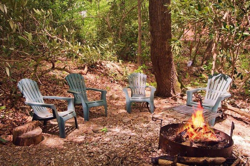 Wooded Setting - Mountain Stream - Real Fireplace - Privacy, aluguéis de temporada em Cosby