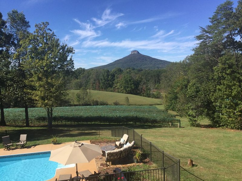 Pilot Mountain Vineyards Riesling Suite with amazing views, holiday rental in Dobson
