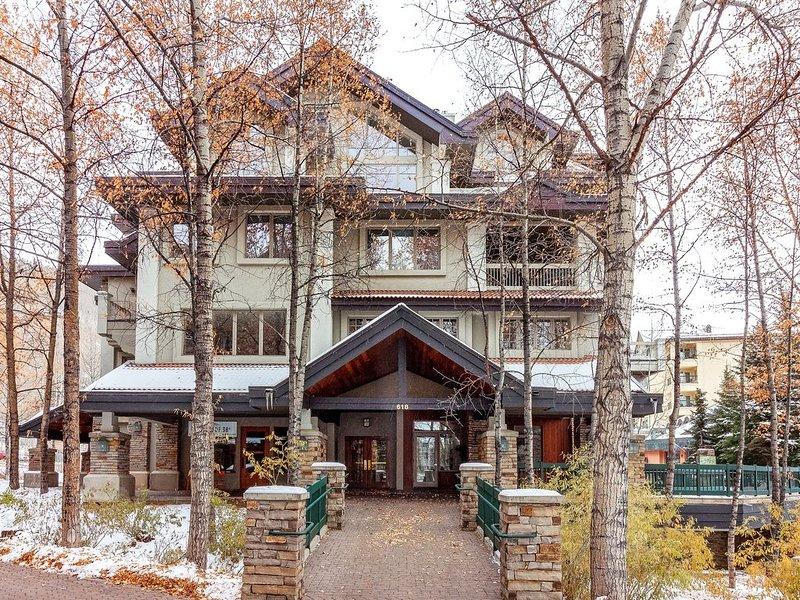 Comfortable and cozy mountain retreat w/beautiful mountain & ski views, location de vacances à Mountain Village