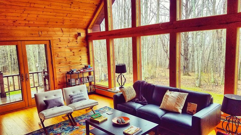 Secret Catskill Cabin, holiday rental in Stamford