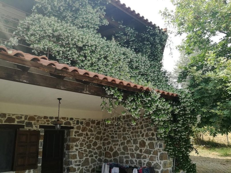 Beautiful Stone House in Politika, casa vacanza a Limnionas
