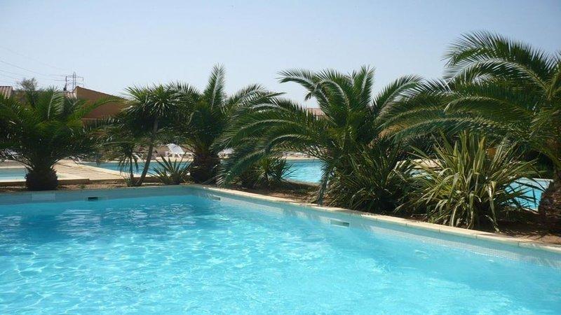 MAISON CLIMATISEE 4 étoiles , avec JARDIN clos arboré et PISCINES collectives., vacation rental in Arles