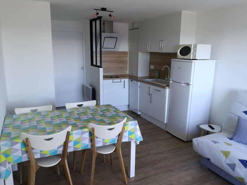 Appartement 4 pers + 1 bébé Saint Lary Pla d'Adet, casa vacanza a Tramezaigues