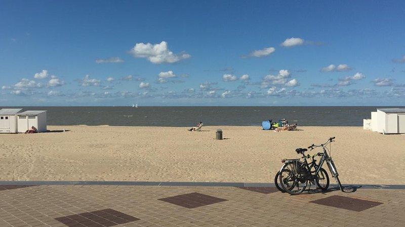 New-Superbe appart. 1ch, 60m2, à 70 m de la digue,  pour 2 pers.,, holiday rental in Knokke-Heist