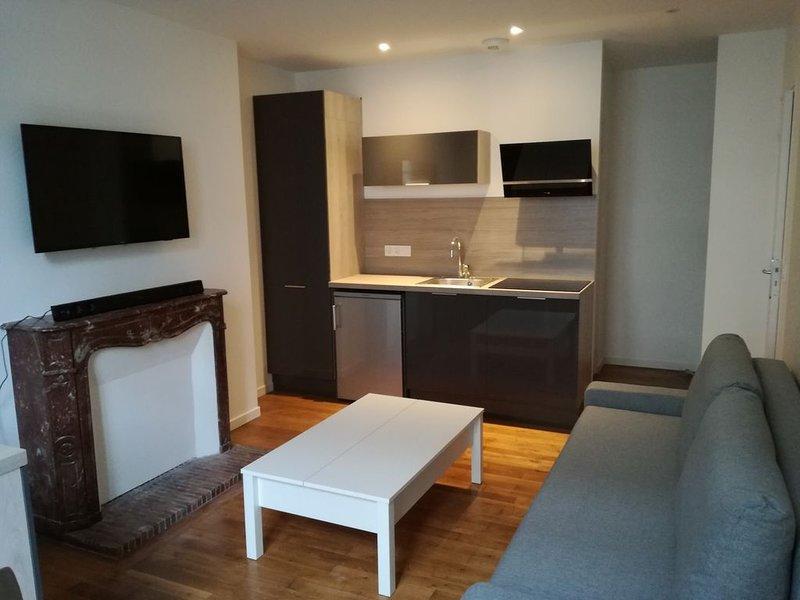 Appartement T2, proche centre, tram et bus, holiday rental in La Membrolle-sur-Choisille