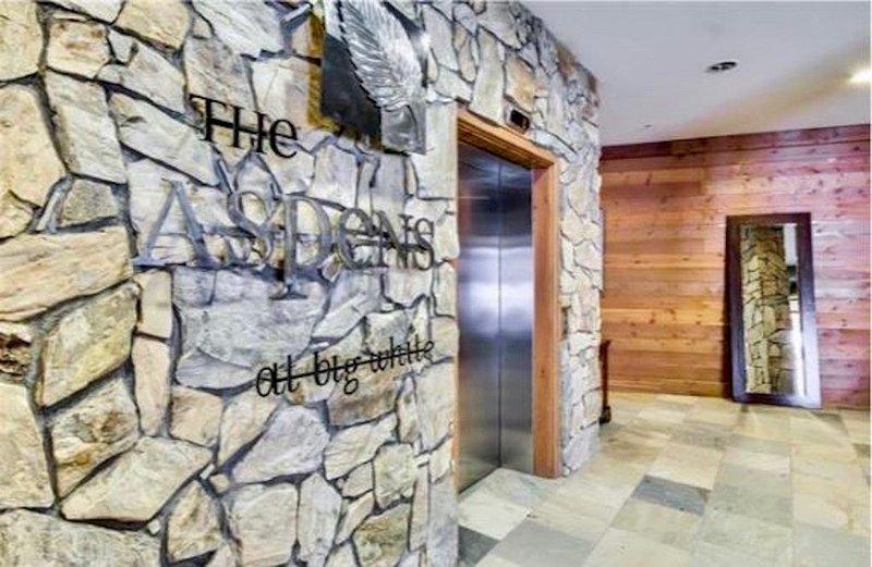 Premier Ski-in/Ski-Out Condo at The Aspens - Big White Ski Resort, alquiler de vacaciones en Big White