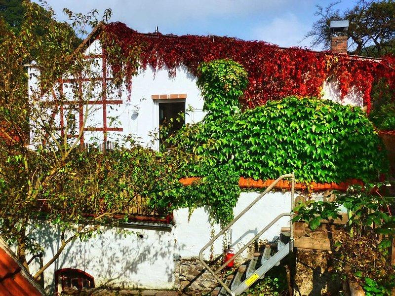 Holiday apartment at the edge of the Kellerwald, aluguéis de temporada em Gilserberg