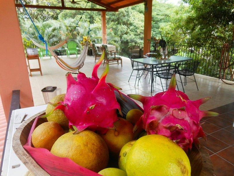 Exclusive Panama Farm Oasis, holiday rental in El Valle de Anton