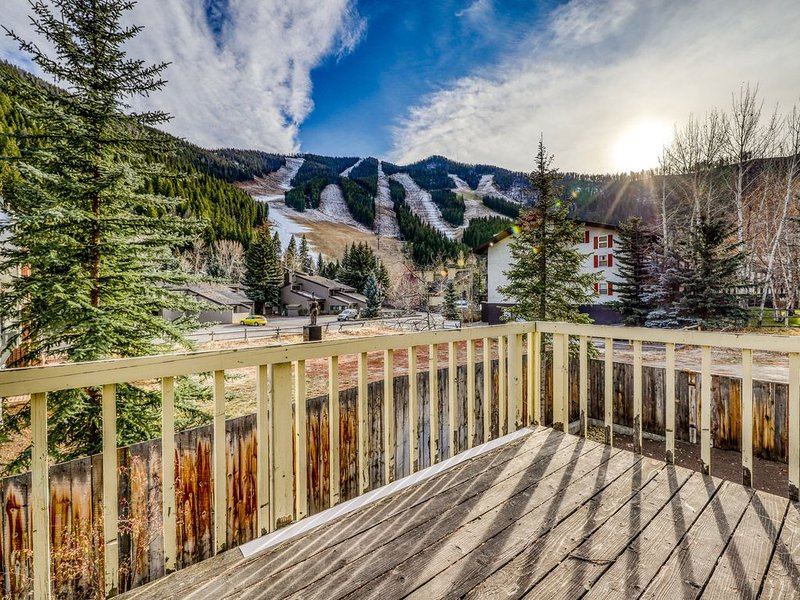Newly-updated dog-friendly condo w/wood fireplace- walk to Warm Springs Lifts!, location de vacances à Ketchum