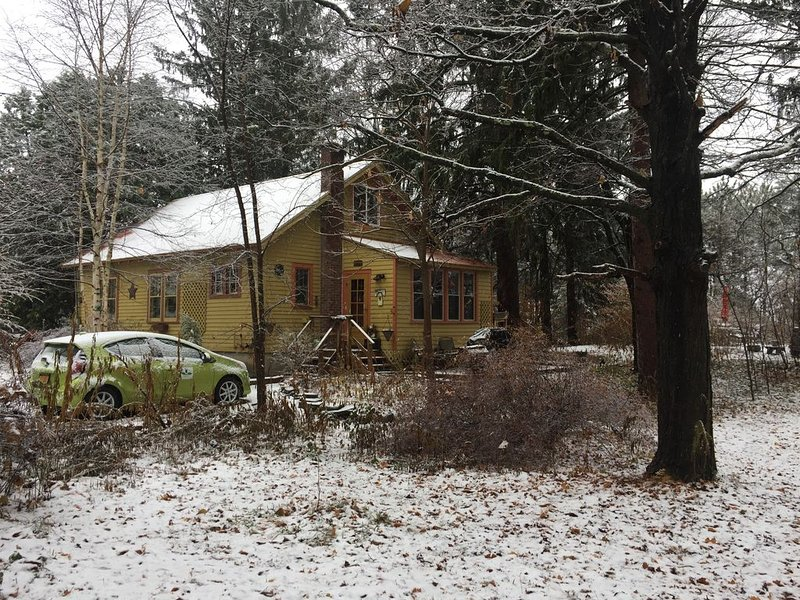 Winter Wonderland, minutes to Hudson and Berkshires, holiday rental in Chatham