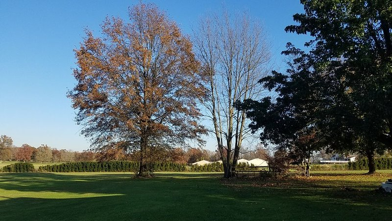 Country Charm Home on Golf Course in Historic Saxonburg, PA, holiday rental in Armstrong County