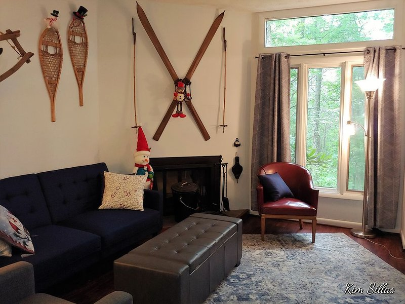 Close to Market/ Clean new Rental., holiday rental in Nellysford