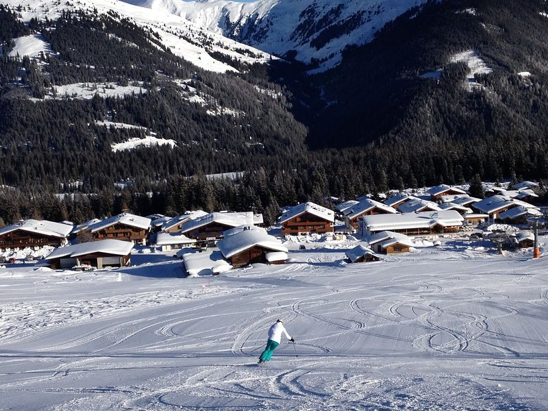 Ski in Penthouse Apartment with glorious views, holiday rental in Gerlos