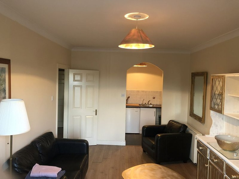 Beautiful City centre Apartment, holiday rental in Castleknock
