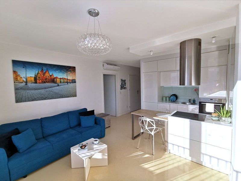 8th Floor Mansion at City Center, vacation rental in Wroclaw