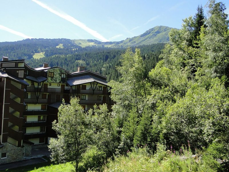 1 Bed Apt, Sleeps 5, Sauna, Wifi, Covered Parking, Kitchenette, Close to Slopes, holiday rental in La Tania