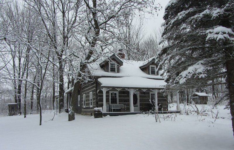 Secluded Log Cabin - Wildflower – semesterbostad i Owen Sound