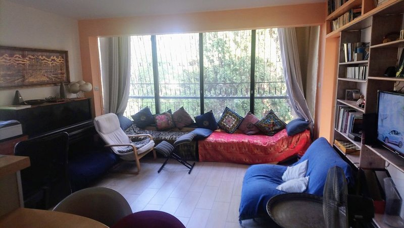 Windows of Trees Apt- Jerusalem  best location in the heart of the GermanColony, vacation rental in Jerusalem