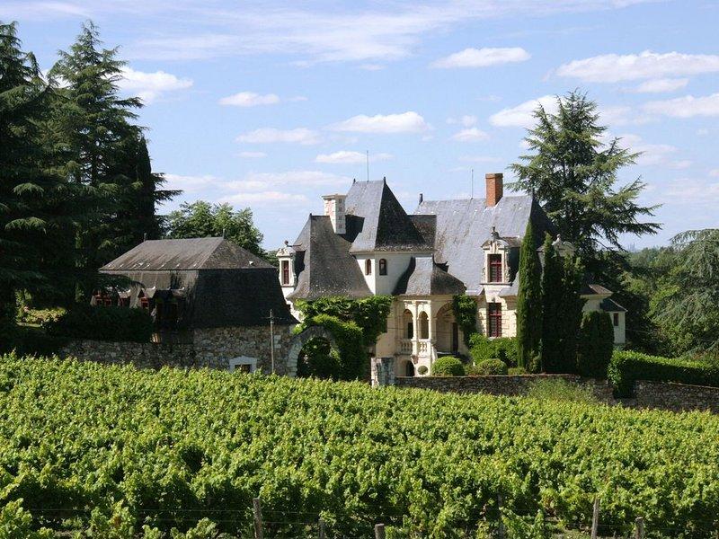 Manoir de la Groye, maison d'hôtes avec piscine en vallée de Loire, alquiler vacacional en La Bohalle