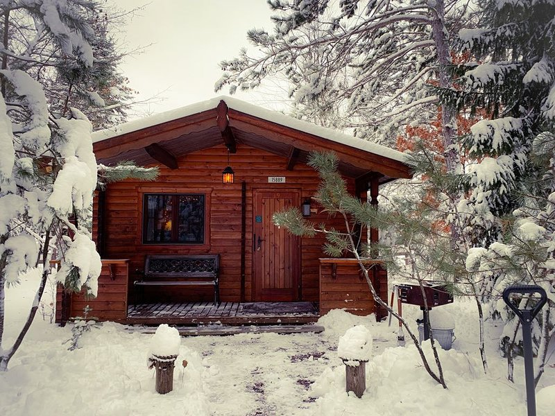 Honey Bear Hideaway - studio cabin in the heart of hayward!, location de vacances à Springbrook