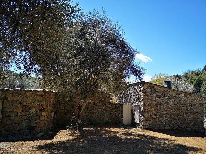 Ancienne bergerie en pierre entièrement rénovée à 2 pas de Corte, location de vacances à Vénaco