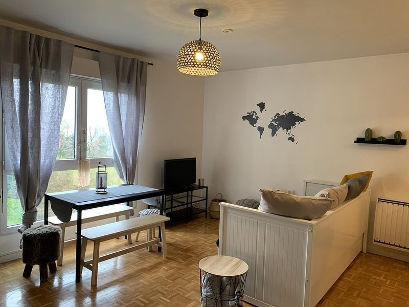 Studio cosy 4 personnes Disney/Paris/Val d'Europe, vacation rental in Claye Souilly