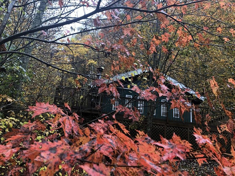 Falling Leaf Cabin - a true cabin in the woods in a private setting, vacation rental in Cullowhee