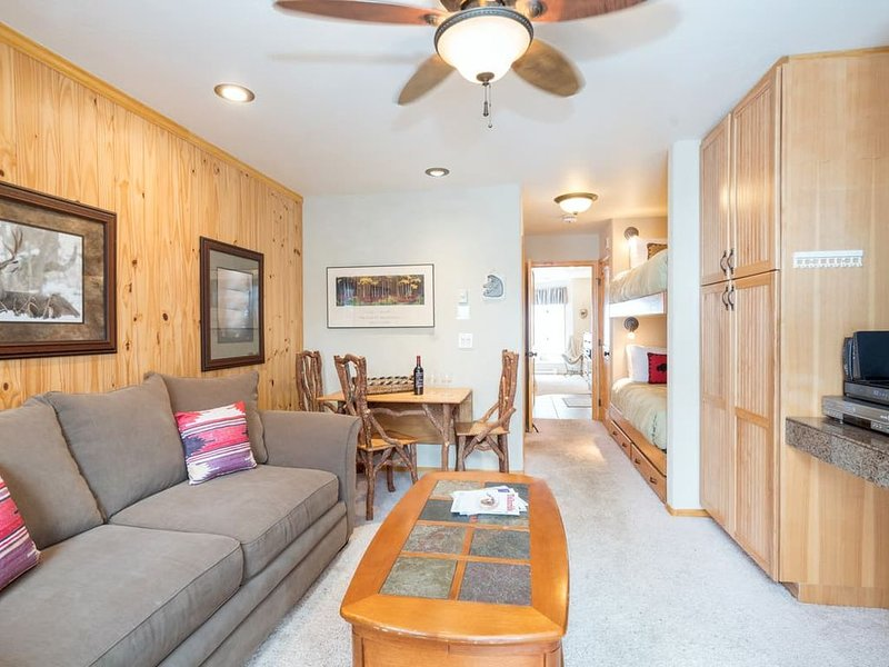 Sun-Filled Condo w Views, King Bed, holiday rental in Telluride
