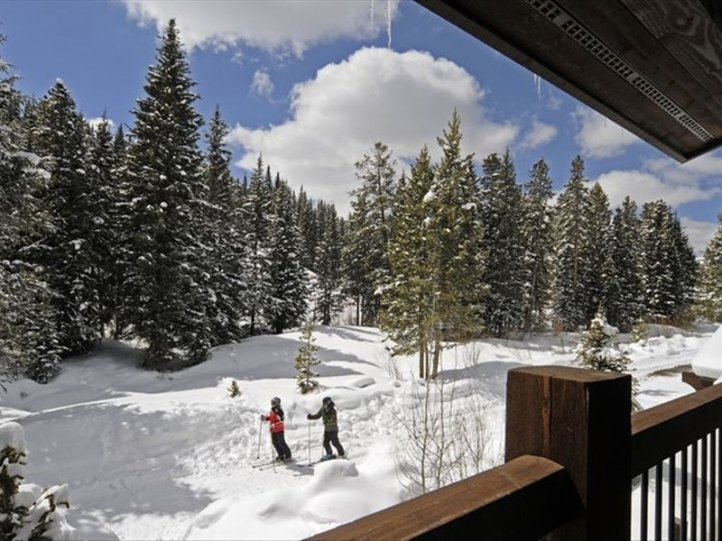 Ski In/Out 4BR Luxury Townhome - 200' To Union Creek Lift! Great Reviews!, holiday rental in Frisco