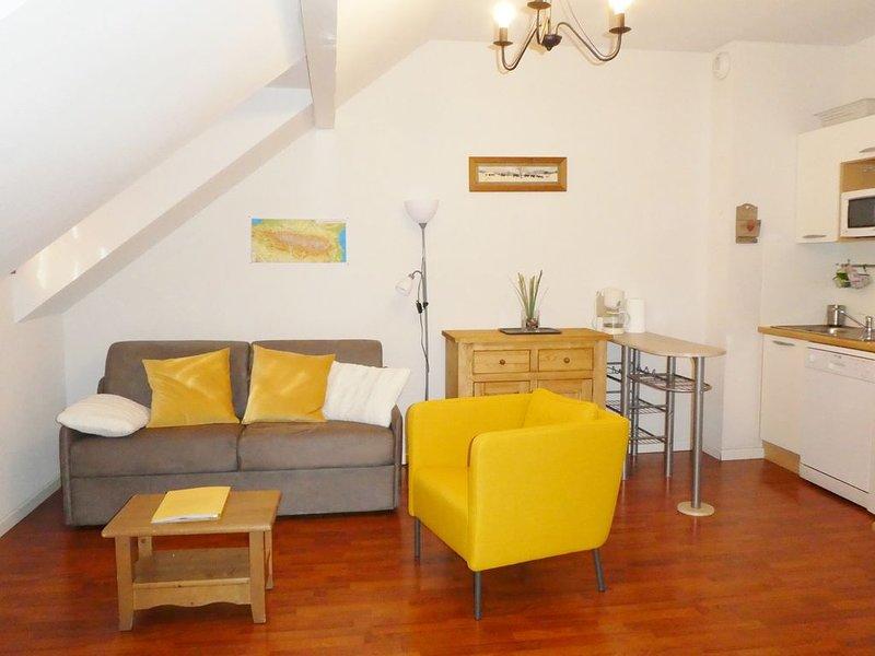 Charmant T2 classé 3* Vignec Saint Lary, holiday rental in Vignec