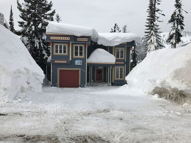 Amazing Ski-In Ski-Out and Mountain View Apartment with Hot Tub, holiday rental in Silver Star
