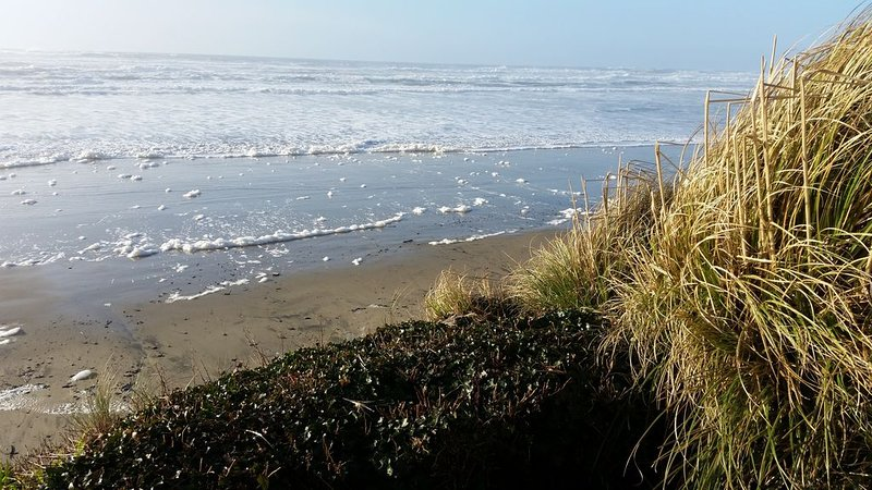 Fill All Your Senses with a 180-Degree Ocean View Right on the Beach, location de vacances à Yachats