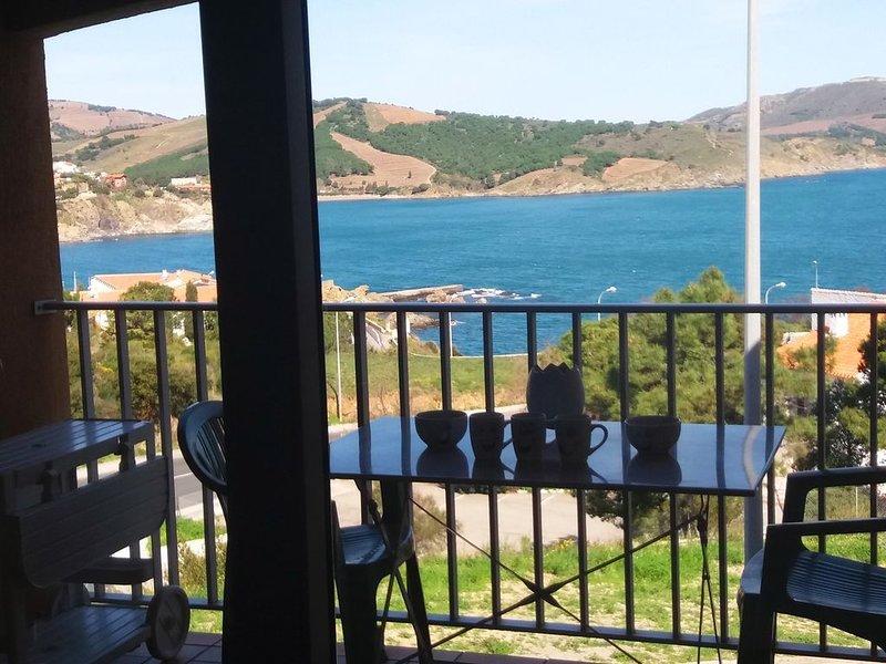 Face à la mer, appartement rénové et climatisé, avec terrasse, Parking, WIFI, alquiler de vacaciones en Banyuls-sur-mer