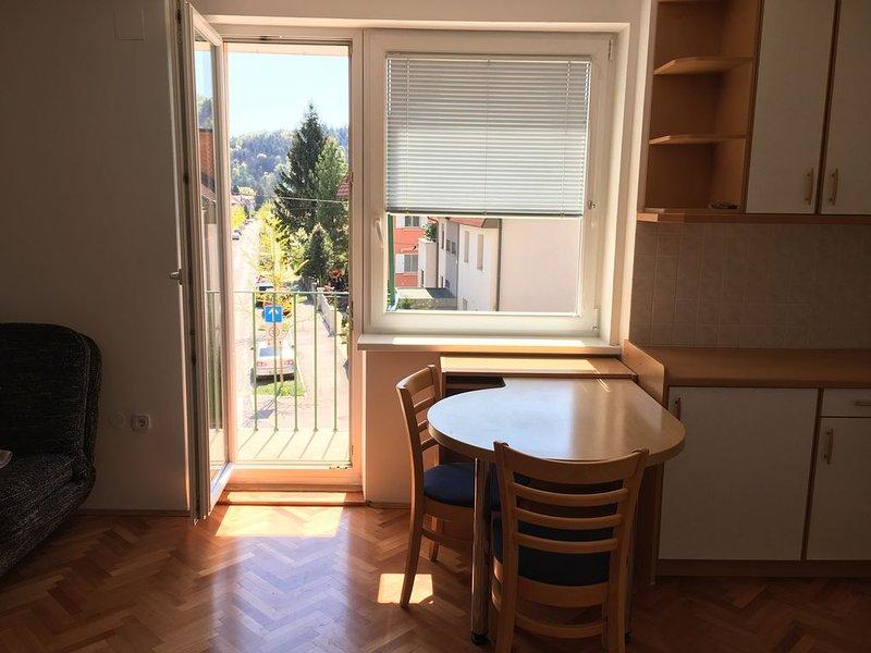 Maja's cozy place Ljubljana, holiday rental in Domzale