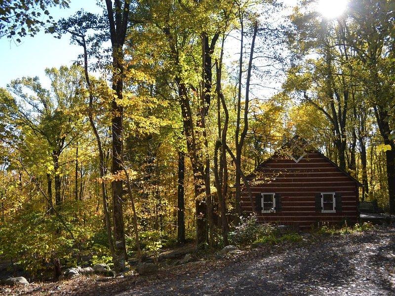 Blue Mountain Log Cabin, location de vacances à Winchester