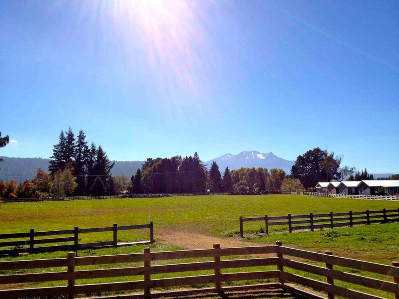Mountain View - Ohakune Holiday Home, casa vacanza a Waiouru