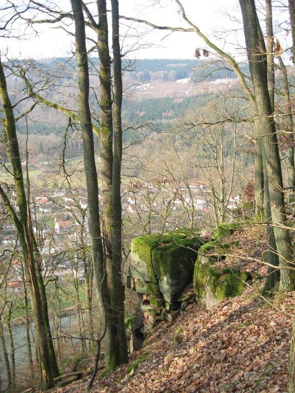 Vue sur Rockenau