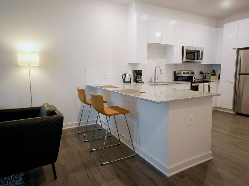 Business Traveler? Flexible Stays, Professionally Cleaned & Sanitized (S1BD), holiday rental in Atlanta