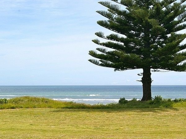 Ocean Bach - Ohope Beach Bach, holiday rental in Ohope
