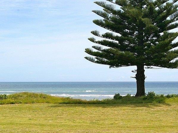 Ocean Bach - Ohope Beach Bach – semesterbostad i Ohope