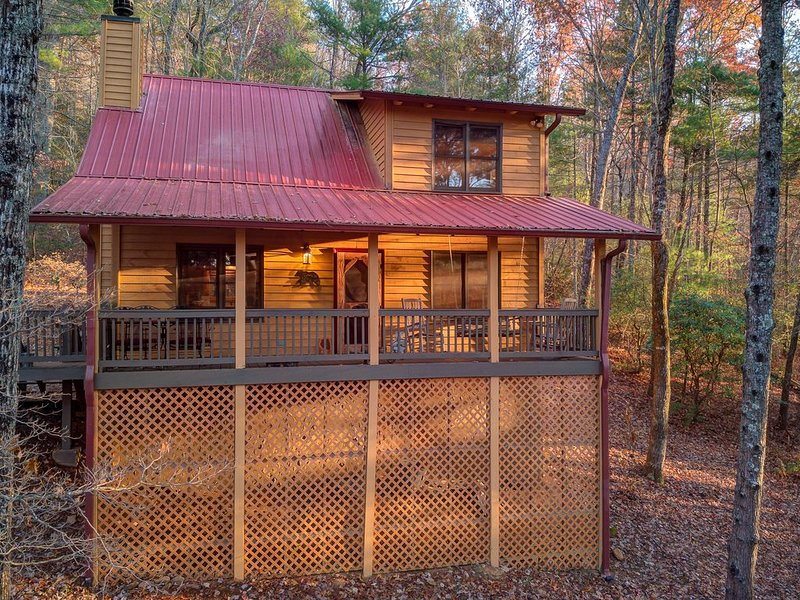 Peaceful dog-friendly cabin w/ wood burning fireplace & a private hot tub!, holiday rental in Blairsville